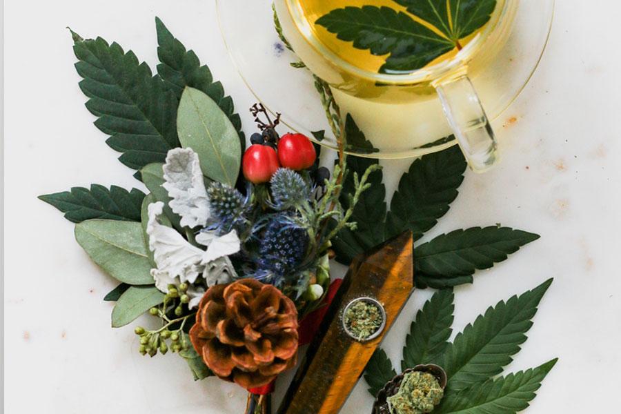Lowering Cholesterol using Herbal Treatment